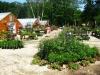 garden-center-7