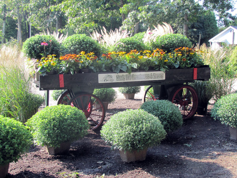 wagon-with-mums
